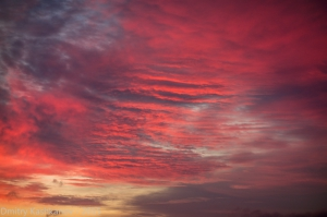 Красивые багровые облака на закате. Фото