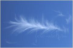 Перо жар-птицы и Луна. Фотографии облаков