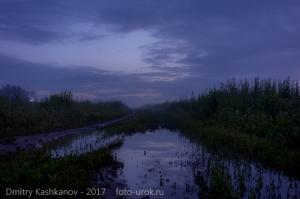 Самая короткая ночь. Прогулка по полевой дороге