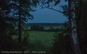 Ночная фотография. Вид на поле через окно в зарослях