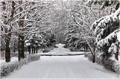 Фонтан зимой. Зимний парк фото