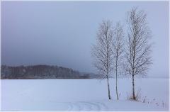 Перед бурей. Унылые зимние пейзажи