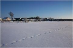 Красивые зимние пейзажи. Зимний морозный день. Следы на снегу