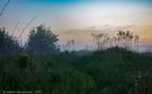 Туманные фото