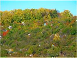 Дачные домики на горке. Золотая осень