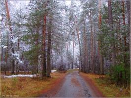 Зима идет, зиме дорогу! Осенние фото. Дмитрий Кашканов