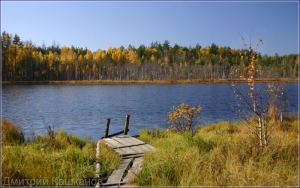 Красивый осенний пейзаж с лесным озером. Осенние фото. Дмитрий Кашканов