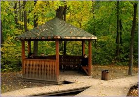 Беседка в осеннем парке. Фото беседки. Городский парк. Воробьевы горы