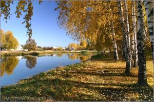 Осенний деревенский пейзаж с озером и березками. Фото.  Дмитрий Кашканов