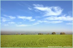 Озимые посевы и небо в облаках