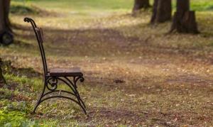 Осень. Скамейка в липовой аллее. Усадьба Подвязье