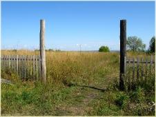 Старые ворота. Поле с сорняками. Самые красивые фото лета 2011