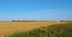 Фото поезда, уходящего в даль. Самые красивые фото лета 2011