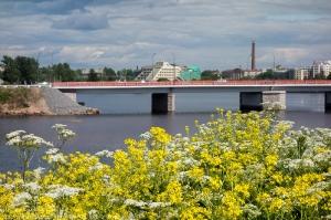 Вид на Петровский мост с острова Выборгского замка