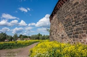 Крепостная стена Выборгского замка. Вид с внешней стороны во время обхода острова