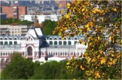 Желтые осенние листья. Нижегородская ярмарка. Нижний Новгород осенью. Фото.