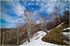 На лысой горе. Весенний пейзаж. Фото рыбим глазом